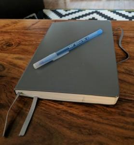 Olamina's religion journal